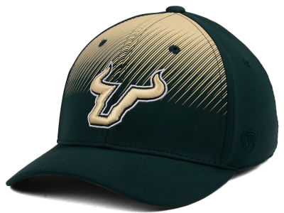 South Florida Bulls Top of the World NCAA Fallin Stretch Cap