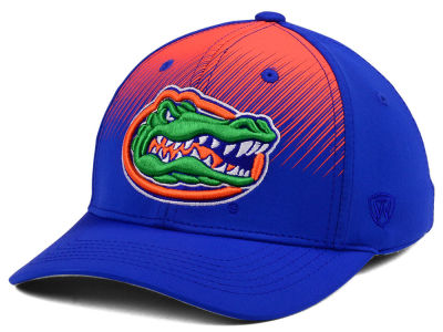 Florida Gators Top of the World NCAA Fallin Stretch Cap