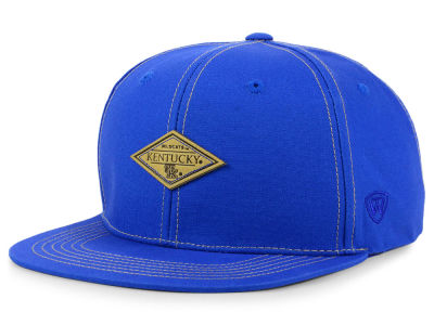 Kentucky Wildcats Top of the World NCAA Diamonds Snapback Cap