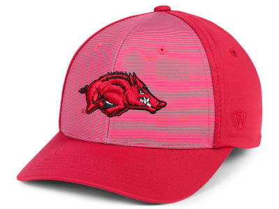 Arkansas Razorbacks NCAA Mist Cap