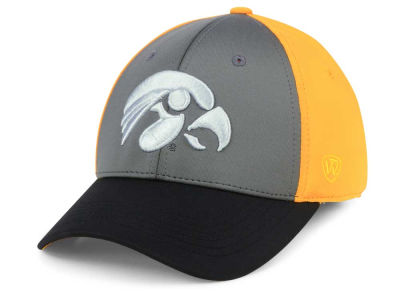 Iowa Hawkeyes Top of the World NCAA Divison Stretch Cap
