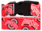 Ohio State Buckeyes Little Earth Medium Pet Collar Pet Supplies