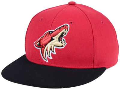 Arizona Coyotes adidas NHL Basic Fitted Cap