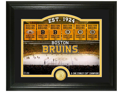 Boston Bruins Rink Photo Mint Coin - Bronze