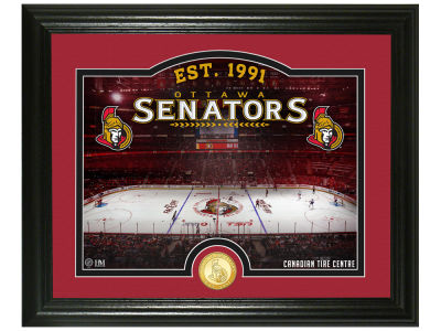 Ottawa Senators Highland Mint Rink Photo Mint Coin - Bronze