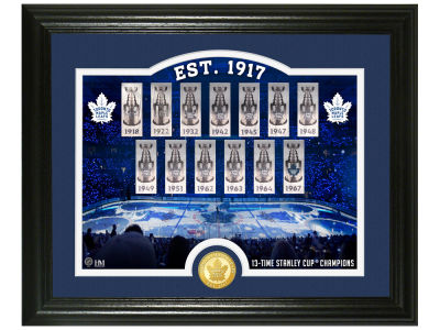 Toronto Maple Leafs Rink Photo Mint Coin - Bronze