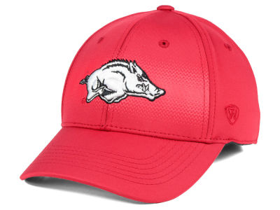 Arkansas Razorbacks Top of the World NCAA Life Stretch Cap
