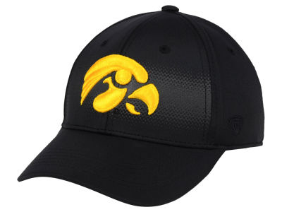 Iowa Hawkeyes Top of the World NCAA Life Stretch Cap