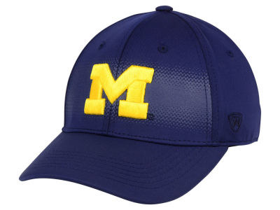Michigan Wolverines Top of the World NCAA Life Stretch Cap