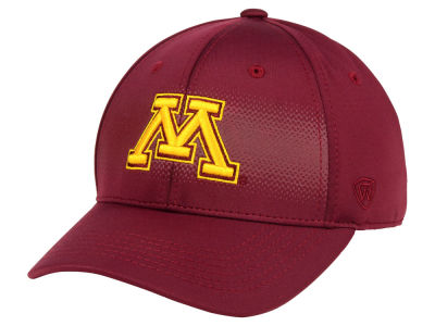 Minnesota Golden Gophers Top of the World NCAA Life Stretch Cap