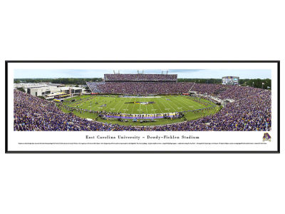 East Carolina Pirates Standard Frame Panorama