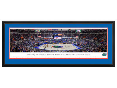 Florida Gators Deluxe Framed Panorama