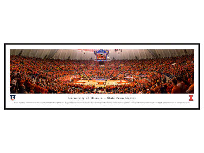 Illinois Fighting Illini Standard Frame Panorama