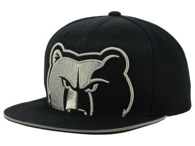 Memphis Grizzlies Mitchell & Ness NBA Cropped Metallic Snapback Cap