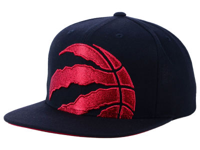 Toronto Raptors Mitchell & Ness NBA Metallic Cropped Snapback Cap