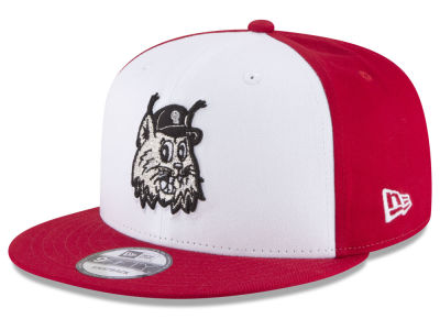 Ottawa Lynx New Era MiLB Hometown 9FIFTY Snapback Cap