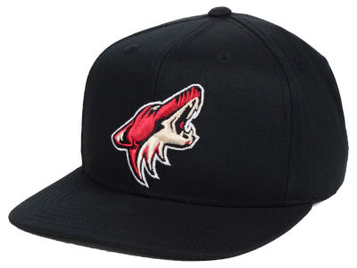 Arizona Coyotes Outerstuff NHL Youth Constant Snapback Cap