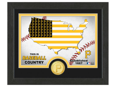 Pittsburgh Pirates Highland Mint Country Bronze Coin Photo Mint
