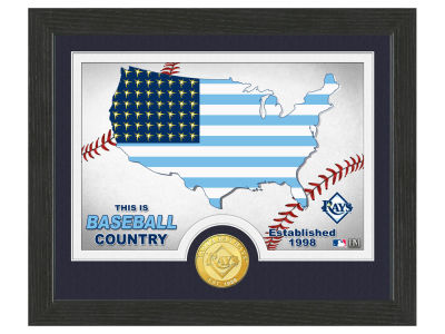 Tampa Bay Rays Highland Mint Country Bronze Coin Photo Mint