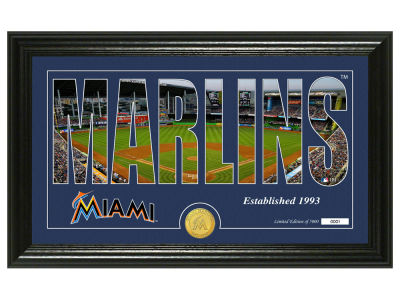 Miami Marlins Highland Mint Silhouette Panoramic Bronze Coin Photo Mint