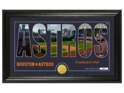 Houston Astros Highland Mint Silhouette Panoramic Bronze Coin Photo Mint