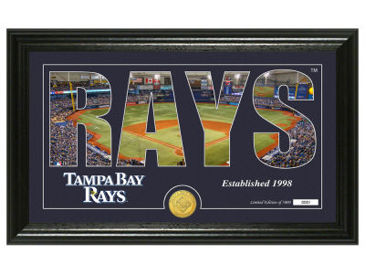 Tampa Bay Rays Highland Mint Silhouette Panoramic Bronze Coin Photo Mint