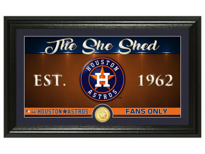 Houston Astros Highland Mint She Shed Panoramic Bronze Coin Photo Mint
