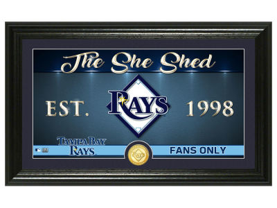 Tampa Bay Rays Highland Mint She Shed Panoramic Bronze Coin Photo Mint