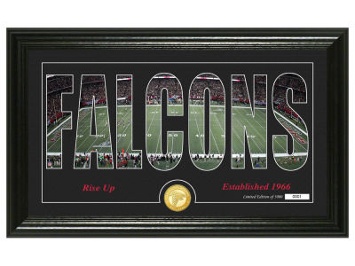 Atlanta Falcons Highland Mint Silhouette Panoramic Bronze Coin Photo Mint