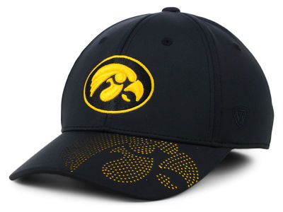Iowa Hawkeyes Top of the World NCAA Pitted Flex Cap