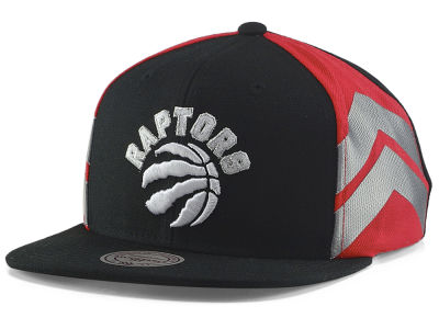 Toronto Raptors Mitchell & Ness NBA North Collection Snapback Cap