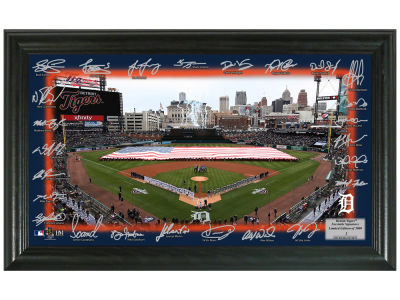 Detroit Tigers Highland Mint Signature Field
