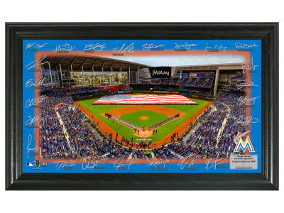 Miami Marlins Highland Mint Signature Field