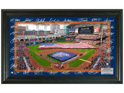 Houston Astros Highland Mint Signature Field