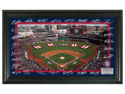 Washington Nationals Highland Mint Signature Field