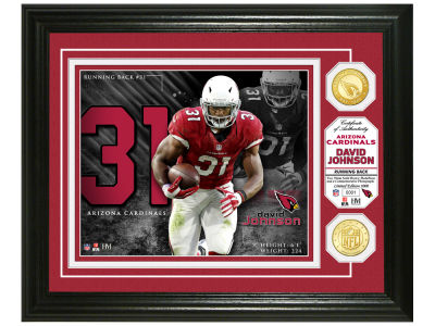 Arizona Cardinals David Johnson Highland Mint Bronze Coin Photo Mint
