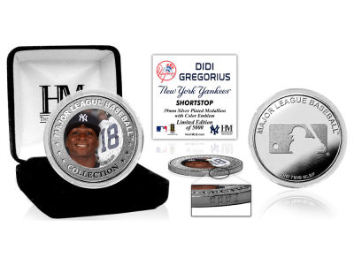 New York Yankees Didi Gregorius Highland Mint Silver Color Coin
