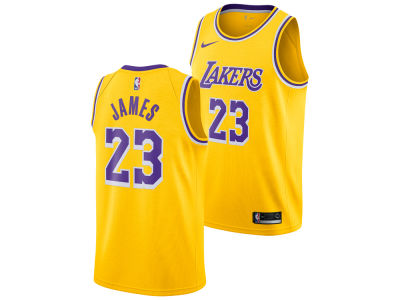 Los Angeles Lakers LeBron James Nike NBA Youth Icon Swingman Jersey