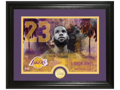 Los Angeles Lakers LeBron James Highland Mint NBA Bronze Coin Photo Mint