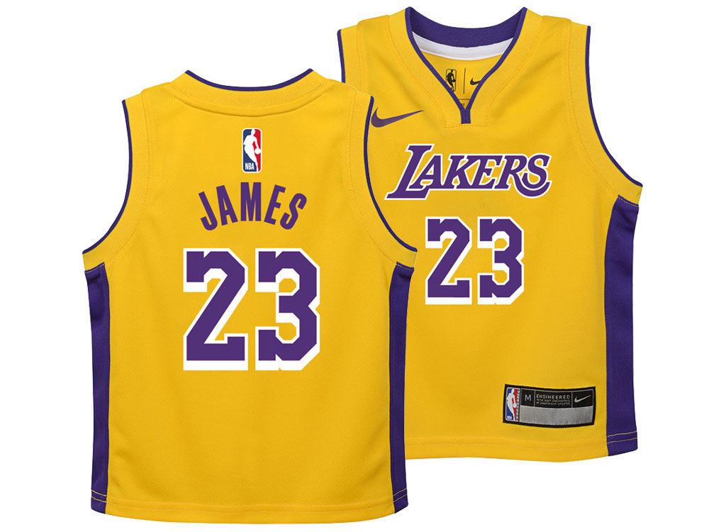 Los Angeles Lakers LeBron James Nike NBA Toddler Icon Replica Jersey ... f1572478532a