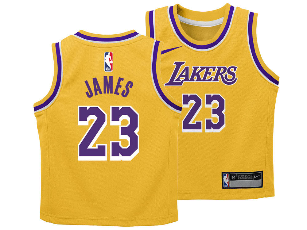 Los Angeles Lakers LeBron James Nike NBA Toddler Icon Replica Jersey ... 708a64173