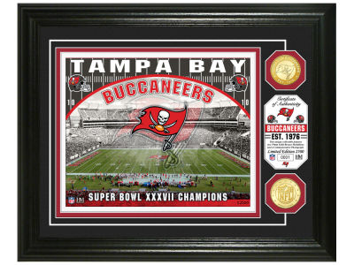 Tampa Bay Buccaneers Highland Mint Stadium Bronze Coin