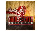 Ohio State Buckeyes NCAA 27 x 20 Logo Artwork Collectibles