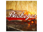 Ohio State Buckeyes NCAA 35 x 11 Logo Artwork Collectibles