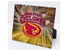 Iowa State Cyclones Highland Mint PleXart Photo Collectibles