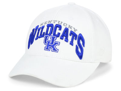 Kentucky Wildcats Top of the World NCAA Whiz Cap