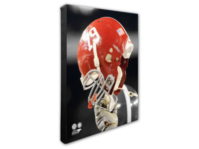 "Alabama Crimson Tide Photo File 16"" x 20"" Canvas Photo"
