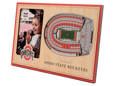 3D Stadium Views Picture Frame