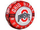 Ohio State Buckeyes The Northwest Company 15inch Cloud Pillow Bed & Bath